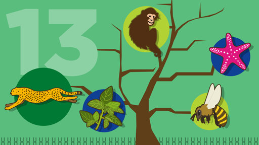 ​15 for 15: The Natural World | NHGRI