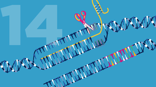 15 for 15: Genome Editing | NHGRI