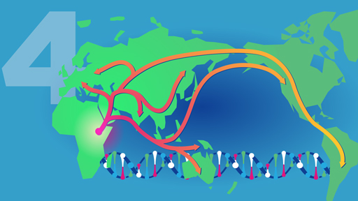 ​15 for 15: Human Origins and Ancestry | NHGRI