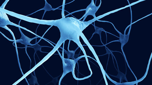 ​About Huntington's Disease | NHGRI
