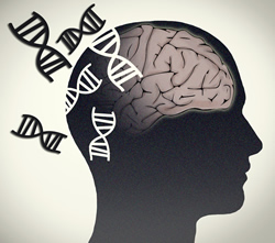 Illustrated human head with DNA helices