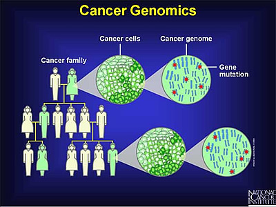 Cancer Genomics illustrated with people and genomes. Courtesy of National Cancer Institute