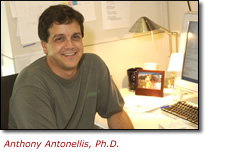 Anthony Antonellis, Ph.D.