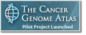 The Cancer Genome Atlas Logo