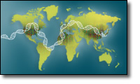 DNA helix on a world map
