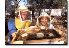 Honey Bee Farmers