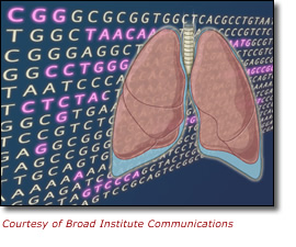 Image of ACTGs and illustration of the lungs. Courtesy of Broad Institute Communications