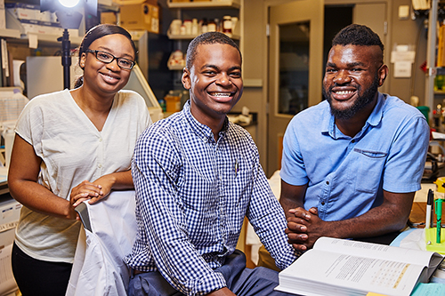 Brenda Iriele, Brandon Davis (center) and Bernard Ndedi spent their summer working on building out The Atlas of Human Malformation Syndromes in Diverse Populations as part of the NIH Summer Internship Program in Biomedical Sciences. Image Credit: Ernesto del Aguila III, NHGRI.