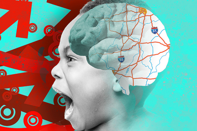 White matter contains the majority of nerve fibers in and transfers information across the brain. With the help of magnetic resonance imaging (MRI) and advanced image processing, researchers can map connections in the brain and determine whether there are subtle disruptions to the white matter tracts in people with ADHD. Image Credit: Darryl Leja, NHGRI.