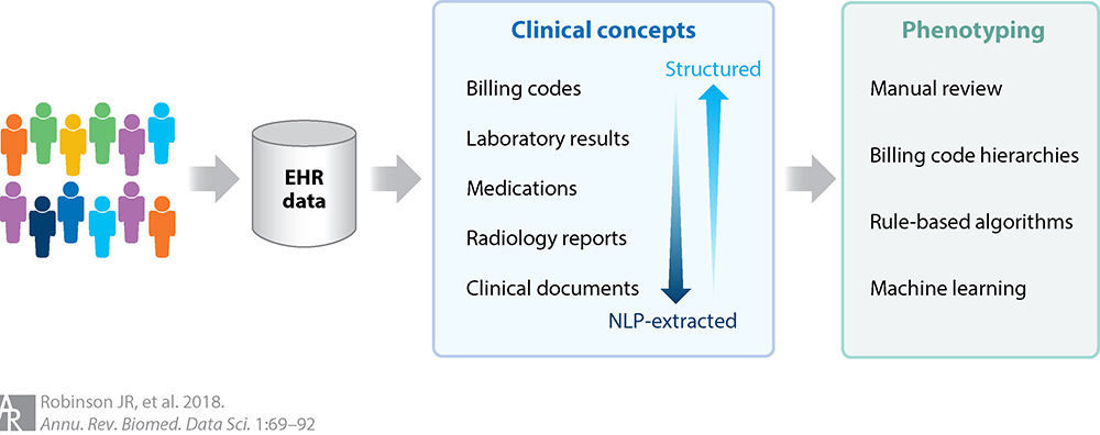 EHR - Clinical Concepts - Phenotyping diagram