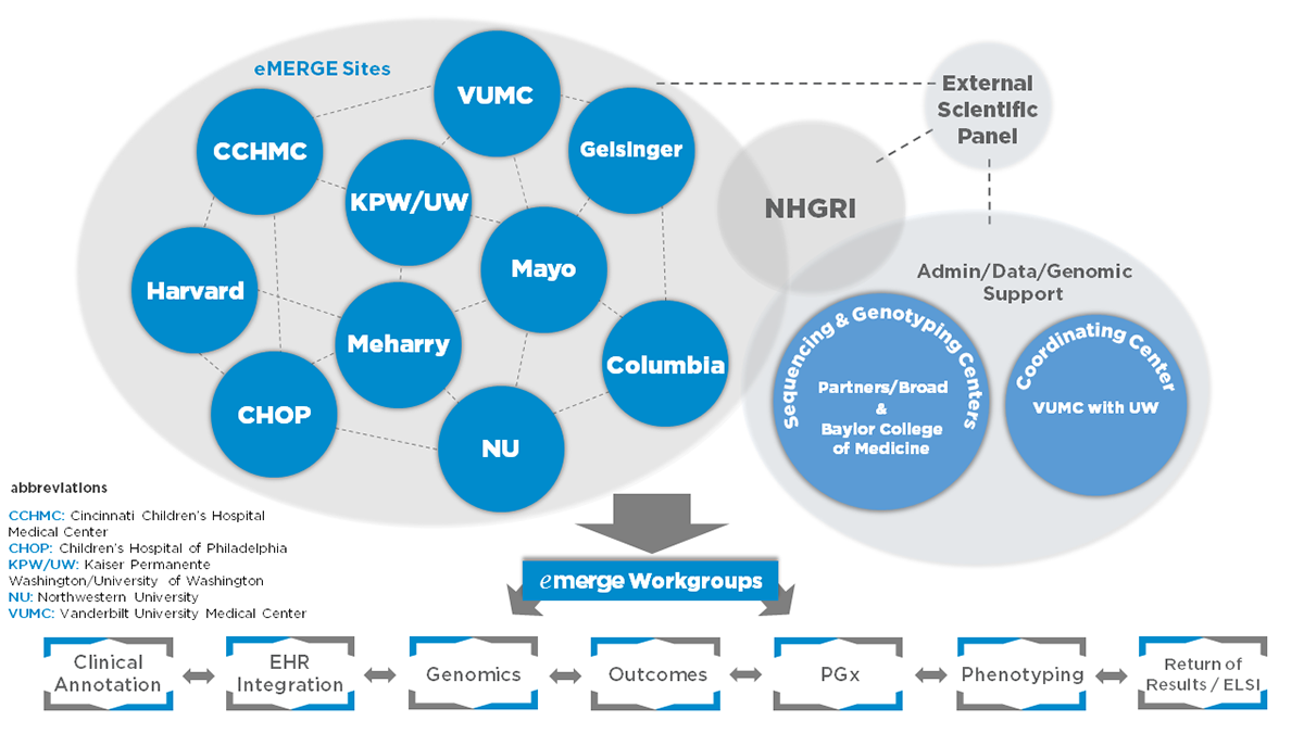 Electronic Medical Records and Genomics (eMERGE) Network | NHGRI