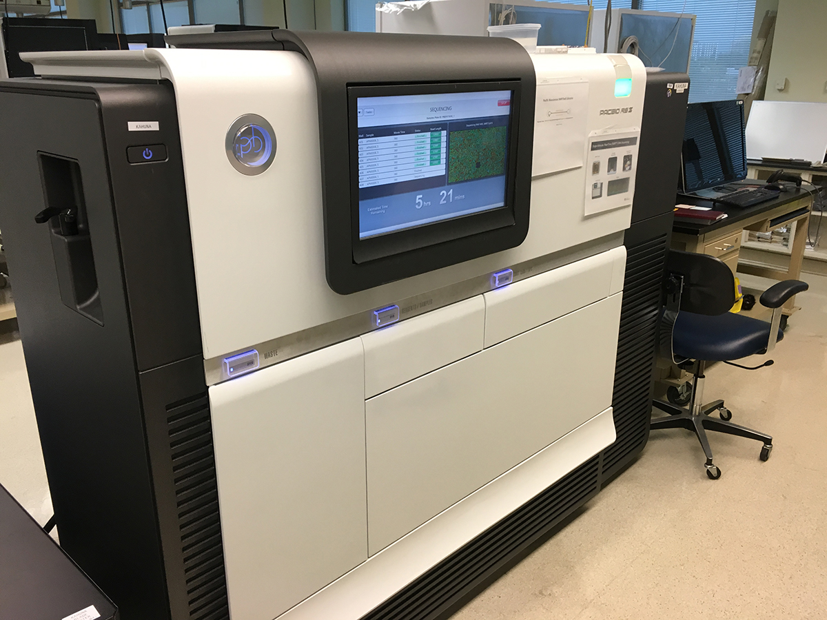PacBio RS II Sequencer