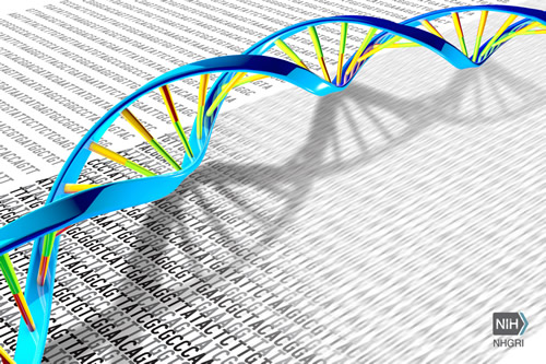 Sequence data and a DNA double helix