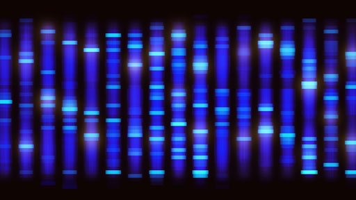 DNA sequencing information