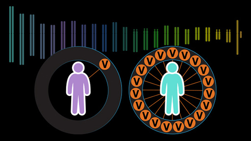 Polygenic Risk Scores
