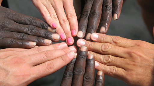 Diverse set of hands