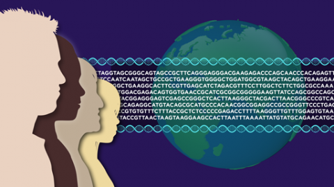 Human Genome Reference