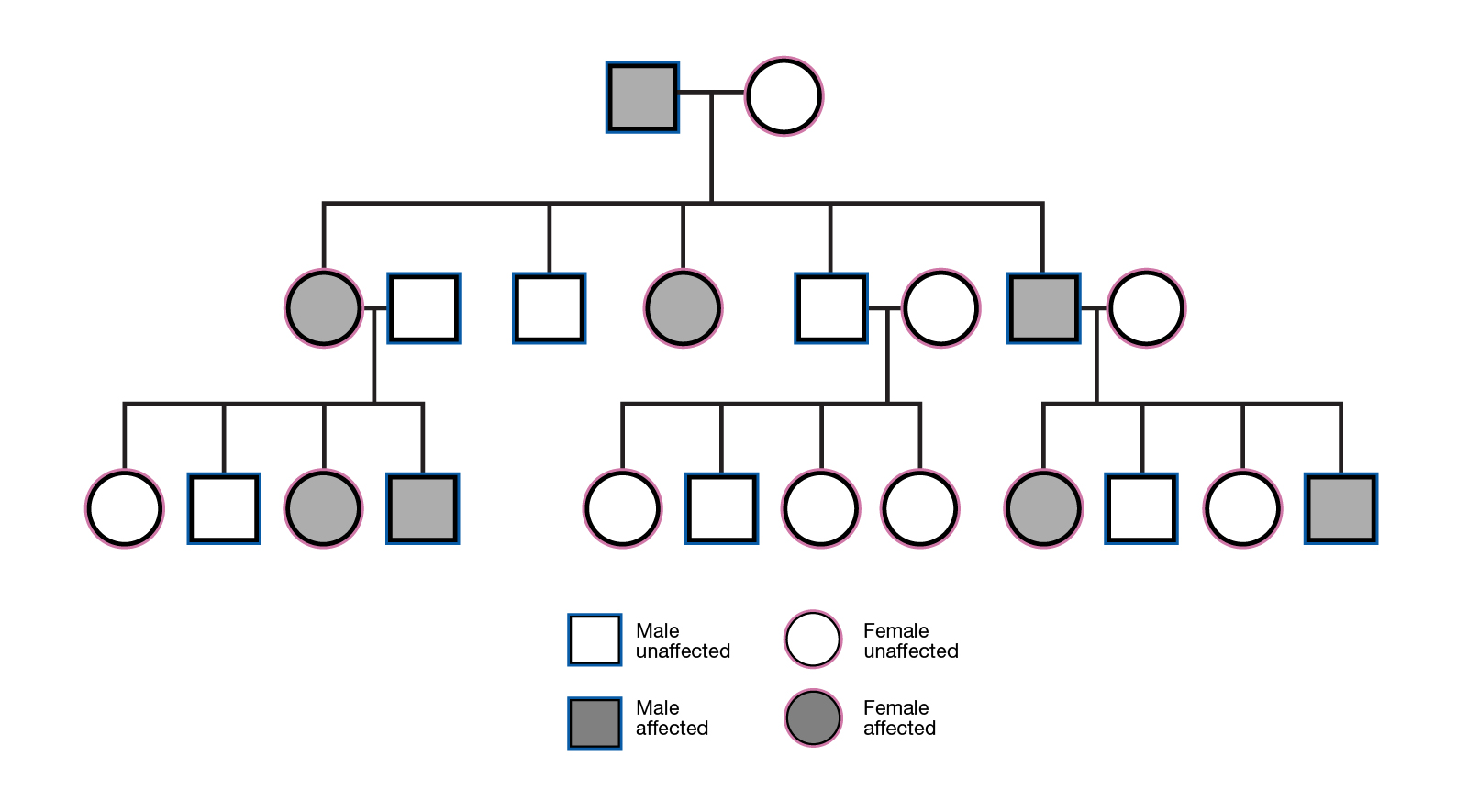 Glossary Of Terms To Help Parents >> Inherited Talking Glossary Of Genetic Terms Nhgri